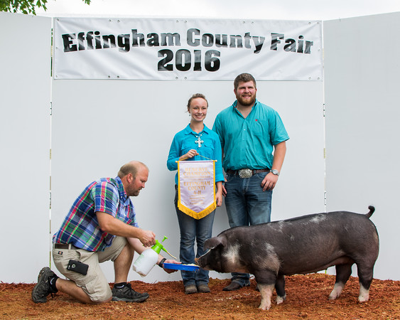 Devin Ammann (right) presents Mackenzie Hoene (center) with an award for Reserve Champion in Swine Senior Showmanship while Allan Kollman (left) keeps the pig from moving.<br /> Trent Pearcy photo