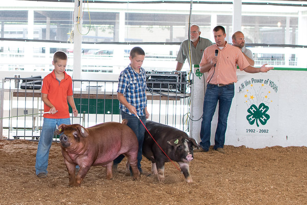 Deken Kemme (left) and Justin Kollmann (center) show off their swine in front of the judge, Will Rincker.<br /> Trent Pearcy photo