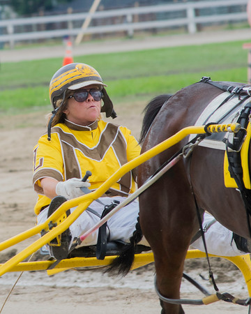 Darla Martin Lohman and her horse, Queen Beatrice, prep for a harness race at the Effingam County Fair on Tuesday.<br /> Trent Pearcy photo