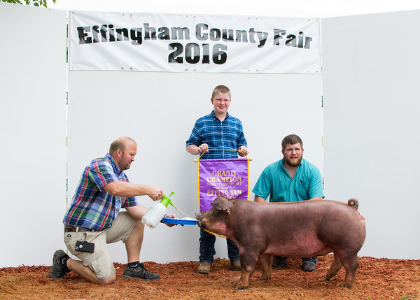 Devin Ammann (right) presents Eric Kollman (center) with a Grand Champion award for Overall Production Gilt while Allan Kollman (left) helps keep the pig still.<br /> Trent Pearcy photo