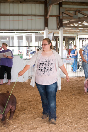 Gina Westendorf showed off a swine at the Effingam County Fair on Tuesday.<br /> Trent Pearcy photo