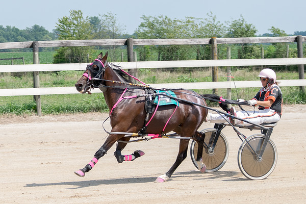 Pamela Coleman (a breast cancer survivor) and her horse, Josting Jack, get ready for a race at the Effingam County Fair.<br /> Trent Pearcy photo