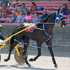 Denis Bankston and his horse, If Urlips Rmoving, get ready for a race at the Effingam County Fair on Thursday.<br /> Trent Pearcy photo