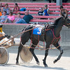 Henry Brown and his horse, Dark Dune, get warmed up for a race at the Effingam County Fair.<br /> Trent Pearcy photo