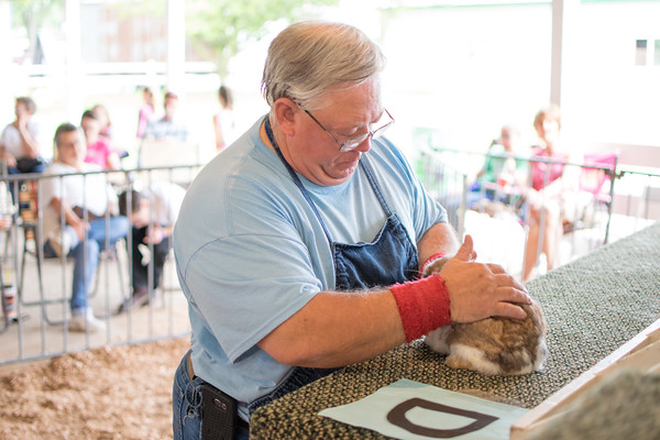 Butch All judges a rabbit in the rabbit contest at the Effingam<br /> County Fair.<br /> Trent Pearcy photo