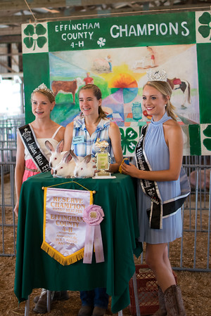 Kaitlyn Boerngen, center, and her rabbits won the Reserve Champion award in the Rabbit Meat Pen category in the rabbit show at the Effingam County Fair. Pictured with her are Effingham County Fair Junior Miss Emma Hewing, left, and Effingham County Fair Queen Ashley Jamerson, right.<br /> Trent Pearcy photo
