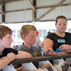 From left, Daniel McCammon, Colten Nelson and Mackenzie<br /> Nelson win ribbons for their entries in the rabbit show at the<br /> Effingam County Fair.<br /> Trent Pearcy photo