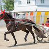 Jared Finn and his horse, Jungleland, race around the track at the Effingam County Fair on Thursday.<br /> Trent Pearcy photo