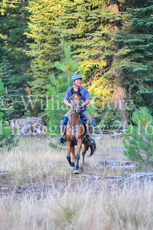 Hat Creek Hustle ~ Diana Hiiesalu ~ Sun
