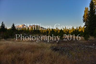Hat Creek Hustle ~ Bill Gore ~ Sun