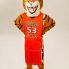 Bengal mascot at Buffalo State College.