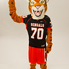 Bengal mascot at Buffalo State College.