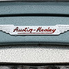 Austin Healey Badge