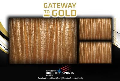 Houston Sports Authority - Draft 5a