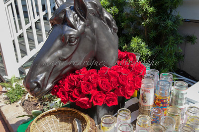 Derby Party 050716-105