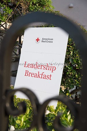 Red Cross Mission Summit Day 2