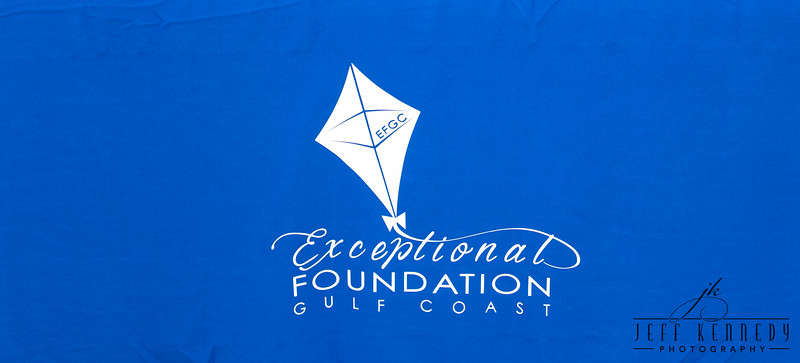 Exceptional Foundation-4219
