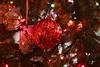 2016 CHRISTMAS 084