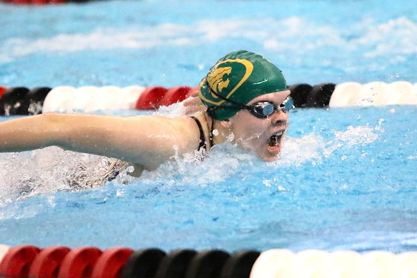 Kennedy at Girls Swimming Regional Sate Qualifier Meet at Linn-Mar 10/29/16