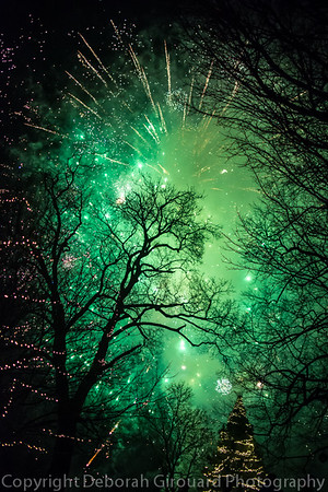 2016 Festival of the Trees, Taylor Park, St. Albans Vermont. Fireworks finale.