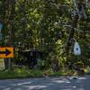08-15-2016, MVC, Deerfield Twp  Jesse Bridge Rd  and Lebanon RD  (C) Edan Davis, www sjfirenews (5)