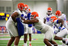 University of Florida Gators Football Fall Practice 2016