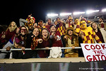 Seminole fans cheer on the Noles as the Florida Gators go into Doak Campbell Stadium and lose to the Florida State Seminoles 31-13.  November 26th, 2016.  Gator Country photo by David Bowie.