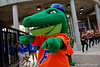 University of Florida Gators Football Gator Walk South Carolina Gamecocks 2016