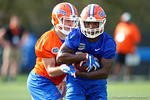 Florida Gators running back Jordan Cronkrite taks a handoff from quarterback Luke Del Rio as the University of Florida Gators football team continues the first week of 2016 spring practices.  March 11th, 2016. Gator Country photo by David Bowie.