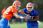 Florida Gators quarterback Austin Appleby hands the ball off to Florida Gators running back Mark Herndon as the University of Florida Gators football team continues the first week of 2016 spring practices.  March 11th, 2016. Gator Country photo by David Bowie.