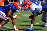 Florida Gators tight end C'yontai Lewis and Florida Gators defensive lineman Jordan Smith as the University of Florida Gators run drills and scrimmage during the third week of spring practice.  March 23rd, 2016.  Gator Country photo by David Bowie.
