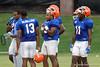 Florida Gators Fan Day 2016 University of Florida Gators Football