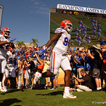 Florida Gators running back Lamical Perine and Florida Gators defensive lineman Jachai Polite sprint onto the field as the Florida Gators defeat the University of Iowa Hawkeyes 30-3 in the 2017 Outback Bowl in Tampa, Florida.  January 2nd, 2017.  Country photo by David Bowie.