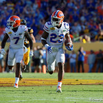 Florida Gators defensive back Chauncey Gardner picks off a pass and returns it for a touchdown during the second half as the Florida Gators defeat the University of Iowa Hawkeyes 30-3 in the 2017 Outback Bowl in Tampa, Florida.  January 2nd, 2017.  Country photo by David Bowie.