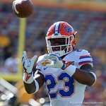 Florida Gators defensive back Chauncey Gardner working on interception drills during pre-game as the Florida Gators defeat the University of Iowa Hawkeyes 30-3 in the 2017 Outback Bowl in Tampa, Florida.  January 2nd, 2017.  Country photo by David Bowie.