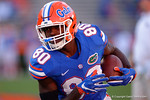 Florida Gators tight end C'yontai Lewis during pre-game drills, as the University of Florida Gators fotball team scrimmages for the final time this spring in the annual Orange and Blue Debut at Ben Hill Griffin Stadium.  April 8th, 2016.  Gator Country Photo by David Bowie.