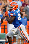 Florida Gators running back Mark Thompson sprints to the endzone  for a touchdown as the University of Florida Gators fotball team scrimmages for the final time this spring in the annual Orange and Blue Debut at Ben Hill Griffin Stadium.  April 8th, 2016.  Gator Country Photo by David Bowie.