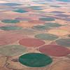 More crop circles