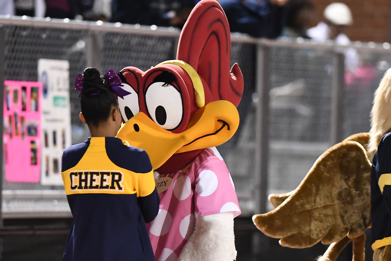 Rocky Mount defeats Northern Nash 14-7 Friday evening November 4, 2016 in Rocky Mount, NC (Photos by Anthony Barham / WRAL contributor.)