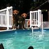 IMG_0086 Pool dogs Aug 5 2016