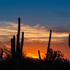 Arizona Sunset 373