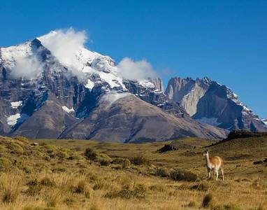 Patagonia-7314