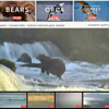 Link:    http://explore.org/live-cams/player/brown-bear-salmon-cam-brooks-falls