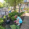 160607 Peace Garden 1