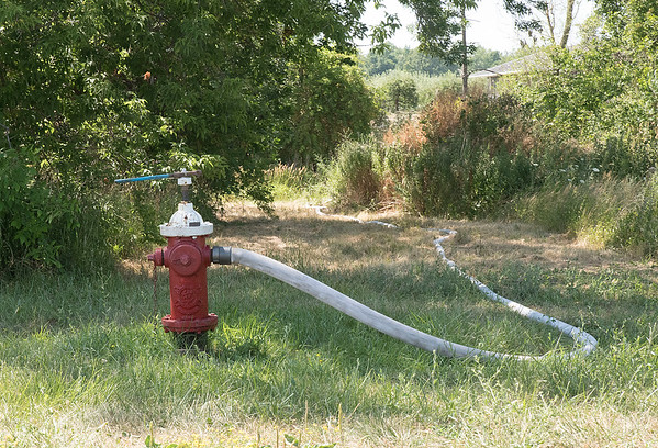 160722 Fire Hydrant 1