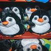 160423 Penguin Days 4