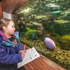 160326 Aquarium