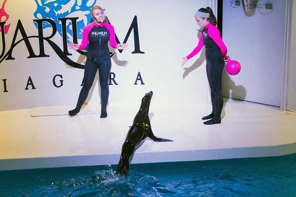 160617 Aquarium debut 2