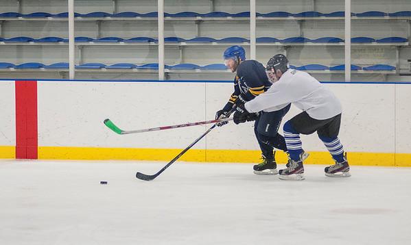 160308 NFPD Hockey 2