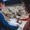 160303 Aquarium Updates 2